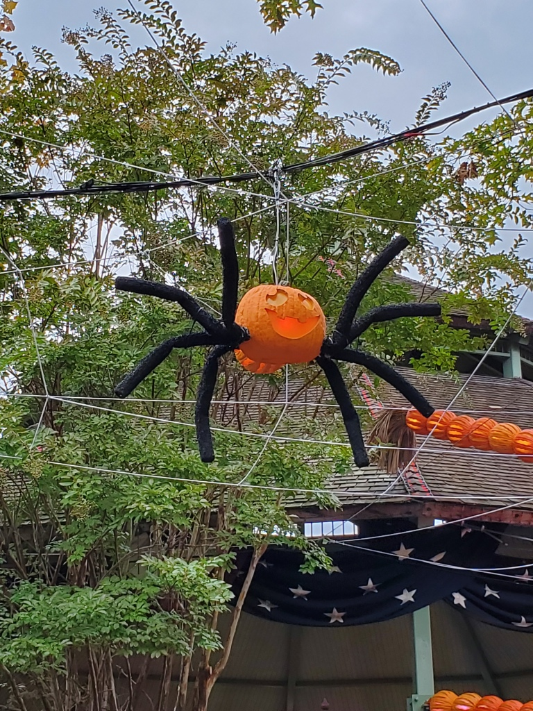 Little spider pumpkin